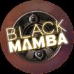 Logo Black Mamba