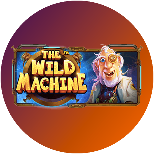 Logo The Wild Machine