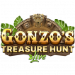 Logo Gonzo's Treasure Hunt