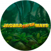 Logo Jaguar Superways